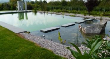 Schwimmteich Ortenau